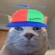 DaBudderKid's avatar