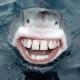 Sunfit's avatar