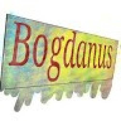 bogdanzidarescu profile picture