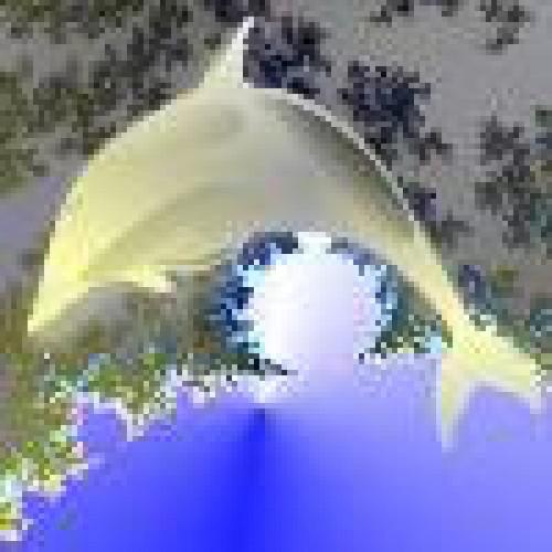 SilverDolphin profile picture