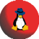 Gravatar de pingou