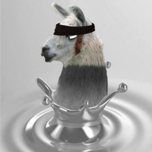 Avatar of wetllama