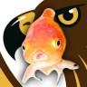 fishtopher