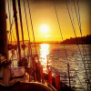 Looking for experienced skipper for voyage from Picton to Auckland - last post by kiwipilgrimnz