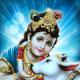 Gravatar of Rashmi