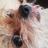 G0d_Baal's avatar