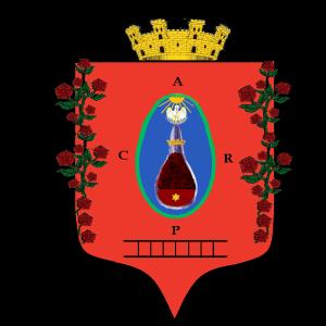 Profile picture for Ernesto García Bermejo