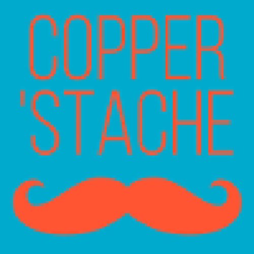 CopperStache profile picture