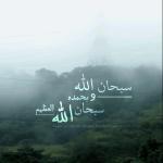 ������ ������� Yousef Al3nzi