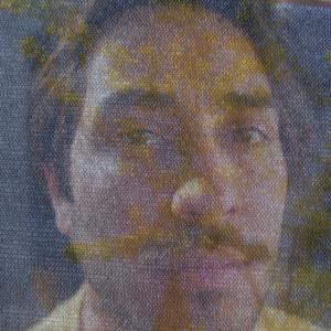 Profile picture for Fedebanz