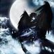 Avatar for timaeus_king
