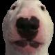 WolfirePlayz's avatar