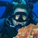 DivingMeCrazy's Photo
