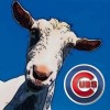Who will be the next manager for the Cubs? - last post by MichiganGoat