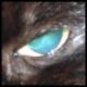 ZakUndersn's avatar