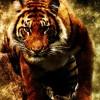 Ayuda con funcion en PHP - last post by nazhox