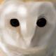 Buba_B's avatar