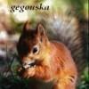 gégouska