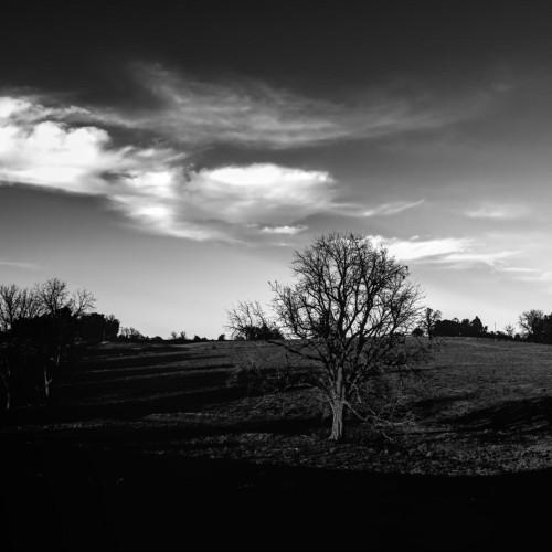 TechRancher profile picture