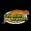 Disponibilidad de Geckos Le... - last post by Crimsot Reptiles