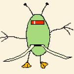 Profile picture of sergio