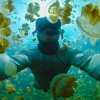 Sony RX100 IV 4K underwater video Taiwan - last post by escape