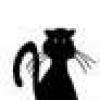 Cat's picture