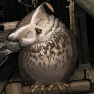Profile picture for NOIZOWL
