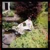 Салат с крабовыми палочками и помидорами - последнее сообщение от ВикторияВ