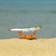 Rexereman's avatar