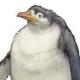 max9343's avatar