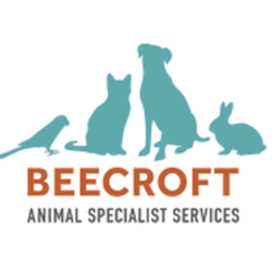 Beecroft Surgical