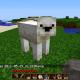 mecanhascookie's avatar