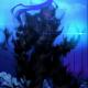 drakon136's Forum Avatar