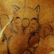 Phoenikz's avatar