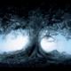 Konungr213's avatar
