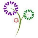 Sendflowersandmore