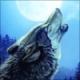 Terra73's avatar