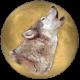 Wolf68k's avatar