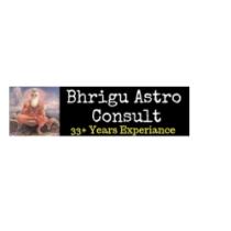 bhriguastroconsult's picture