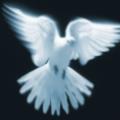 Costin's avatar
