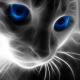 Partycommander's avatar