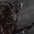 Demise's avatar