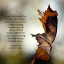 Profile photo of Ankur Bisht