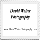 David Walter Photography