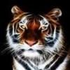 Airsuprem's avatar