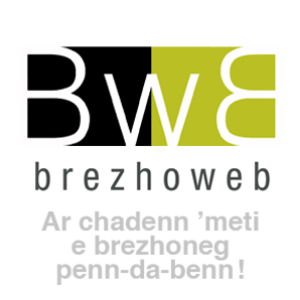Profile picture for brezhoweb
