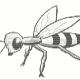 bugz000's avatar