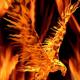 rocketman909's avatar