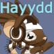Hayydd's avatar